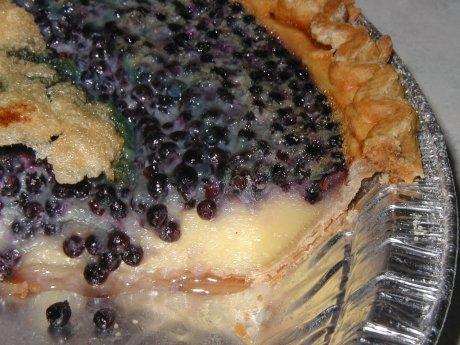 Elderberry Custard Pie!