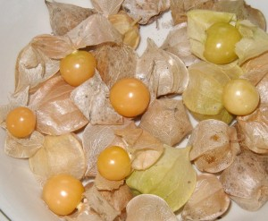Peel back the paper husk to reveal the tiny yellow tomato.
