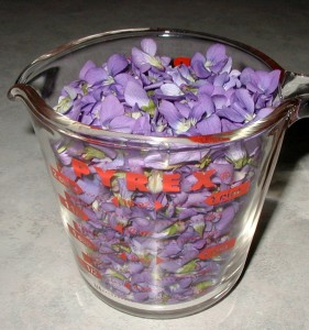 Two cups of violet flowers in a glass measuring cup.