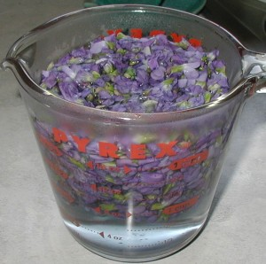 Two cups of violet flowers after two cups of boiling water was poured on them.