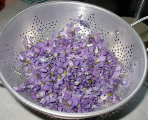 Violets were rinsed with water running through a colander.