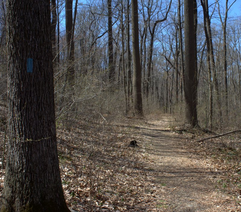 Trails are well marked by colored blazes painted on trees.