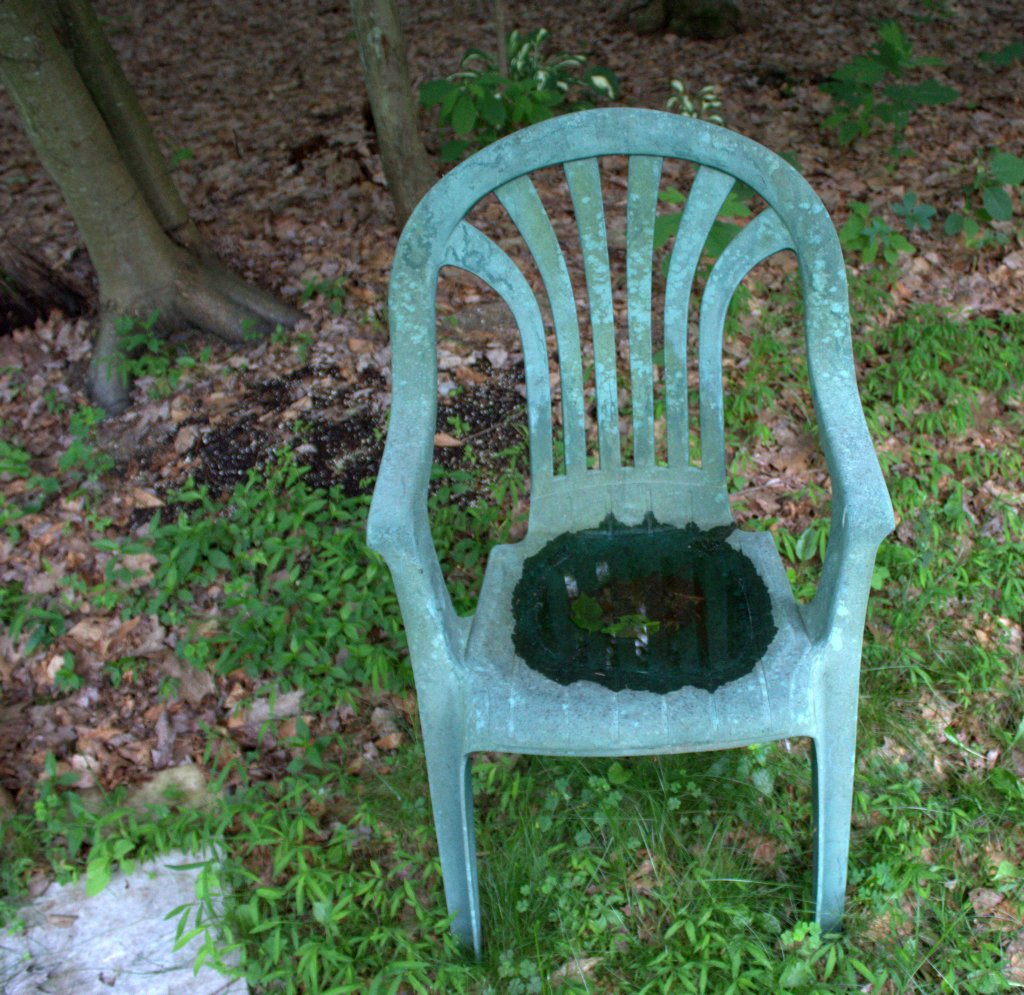 Shallow water in a chair seat was deep enough for a mosquito to lay her eggs.