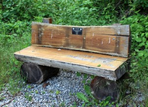 Trail Bench Made From Logs