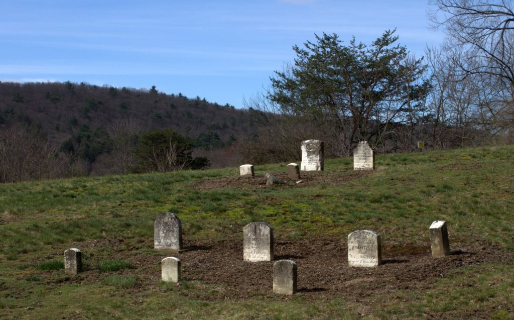 Looking Back at Cemetery Footstones Where Storksbills Grow